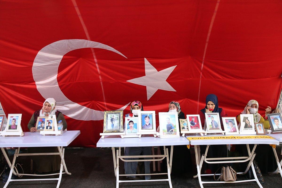 Diyarbakır annelerinin nöbeti, 723'üncü gününde  #4