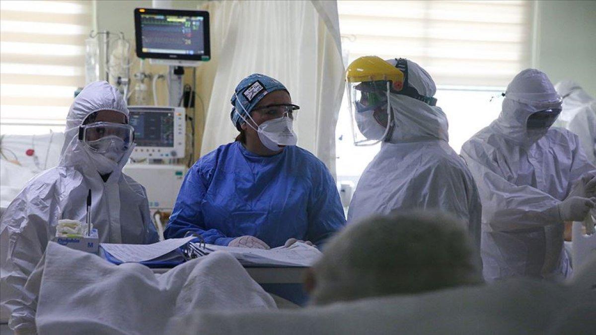 Türkiye de tanımlanamayan yeni bir koronavirüs mutasyonu tespit edildi #3