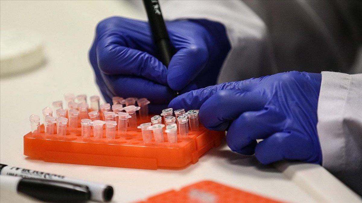 Rusya da dördüncü korona aşısı tescillendi #1