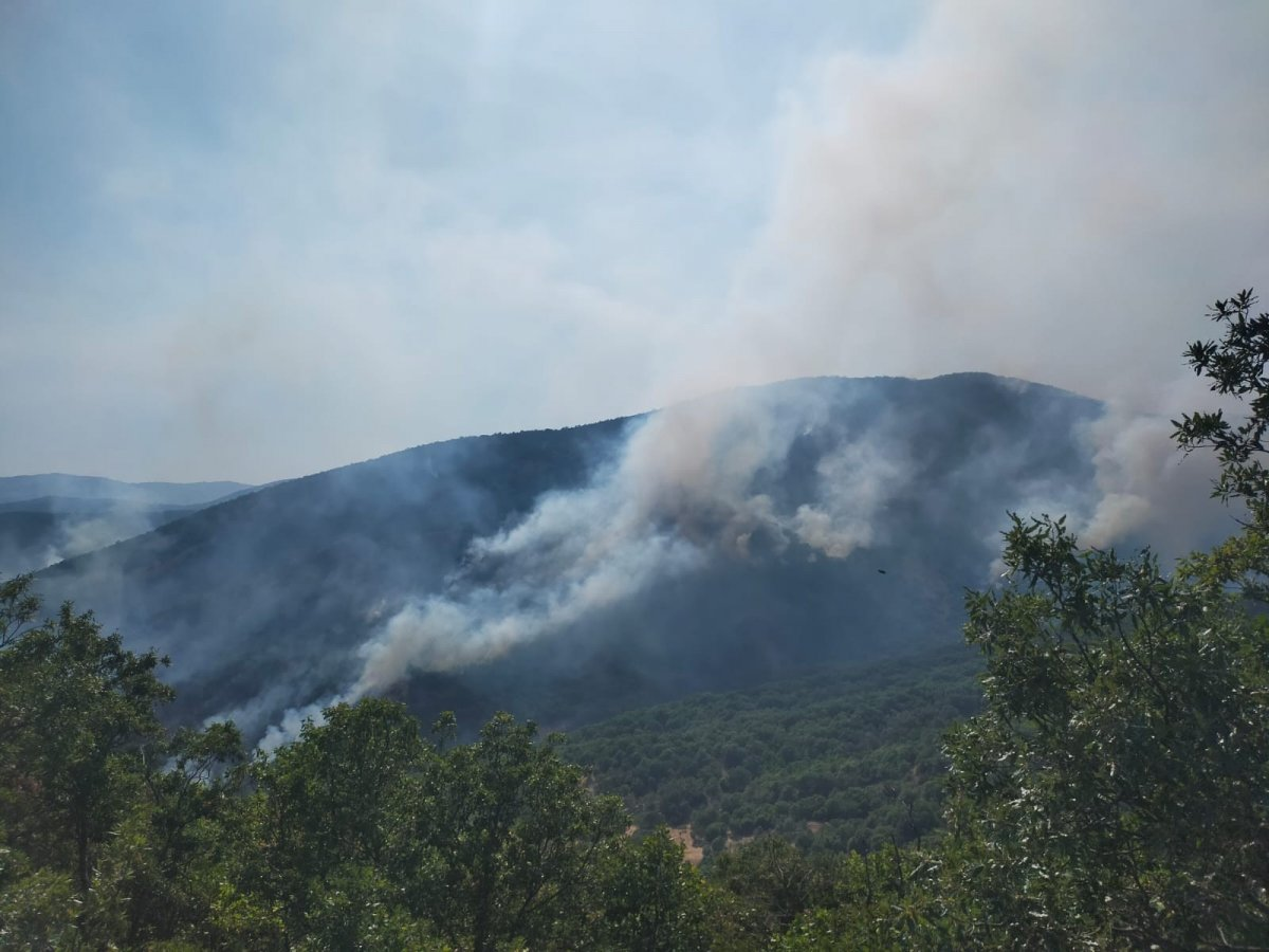 Tunceli Valiliği'nden orman yangınlarına ilişkin açıklama #3