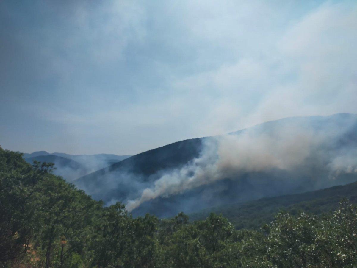Tunceli Valiliği'nden orman yangınlarına ilişkin açıklama #1