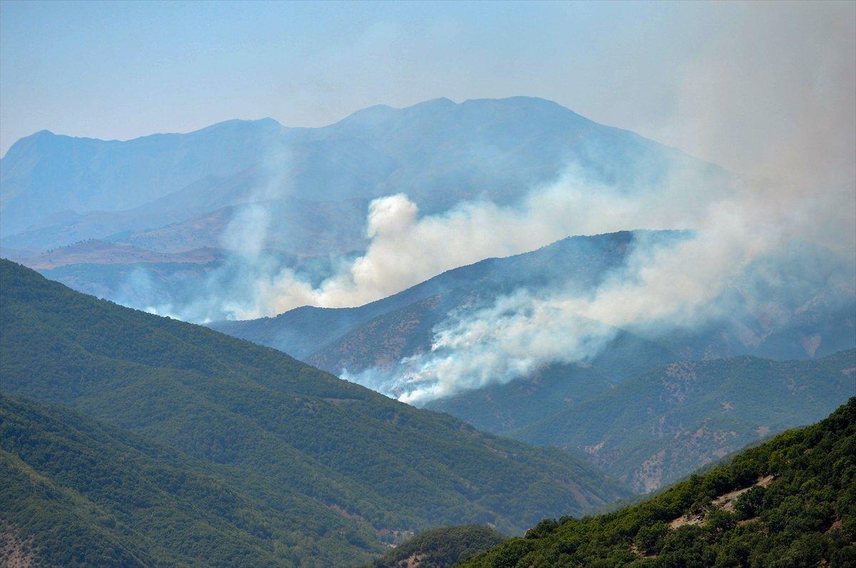 Türkiye genelinde 6 orman yangını kontrol altına alındı #1