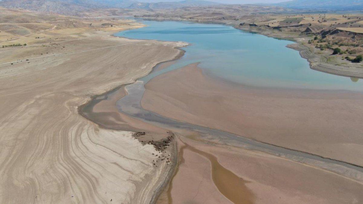 Sivas ta suların çekildiği baraj, yürüyüş alanına döndü #1