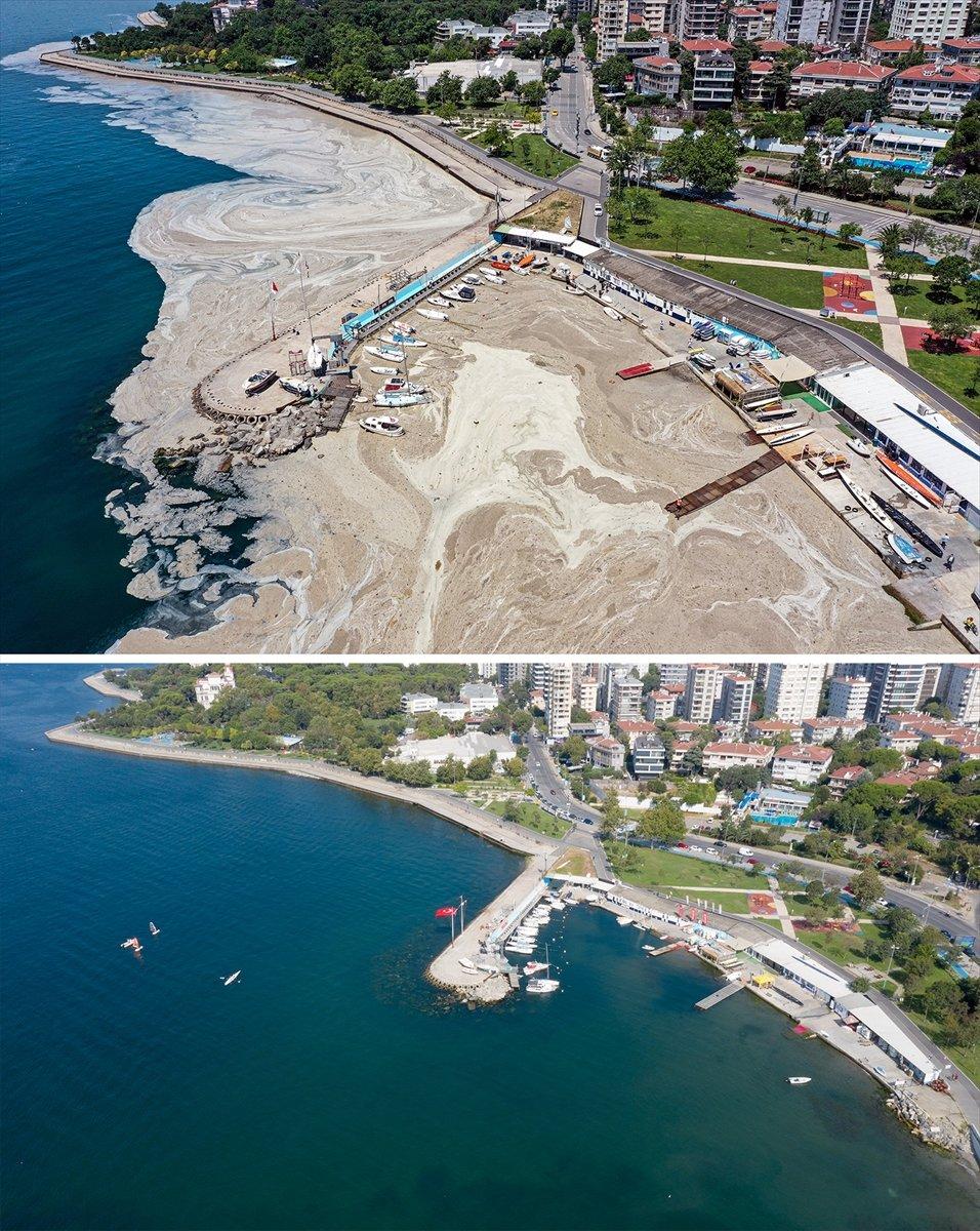 İstanbul sahilleri müsilajdan arındırıldı #16