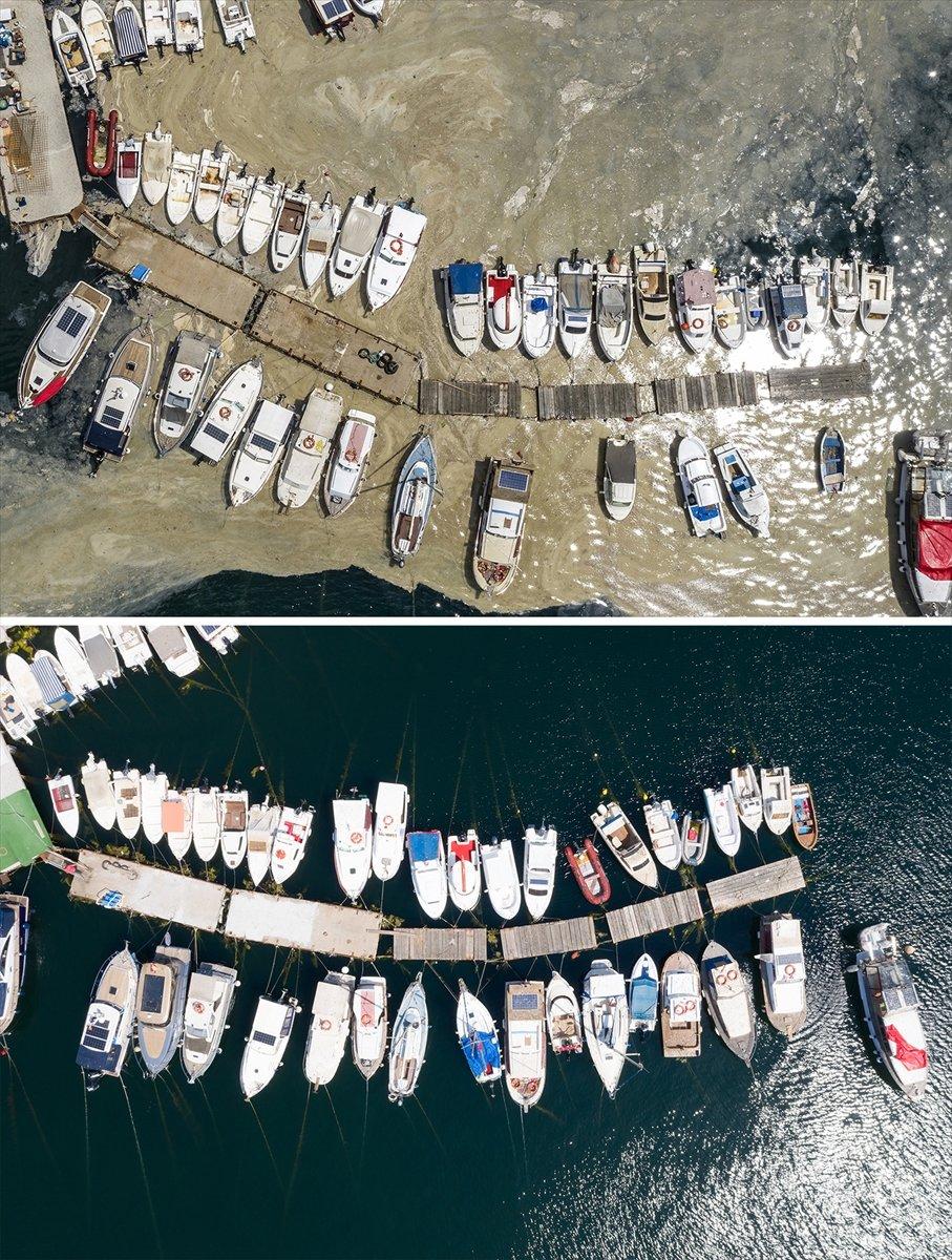 İstanbul sahilleri müsilajdan arındırıldı #8