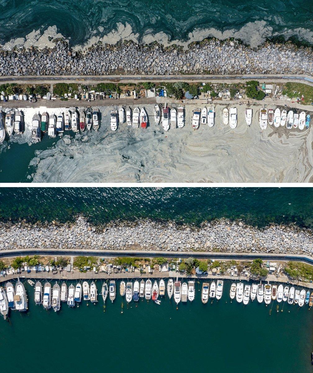 İstanbul sahilleri müsilajdan arındırıldı #2