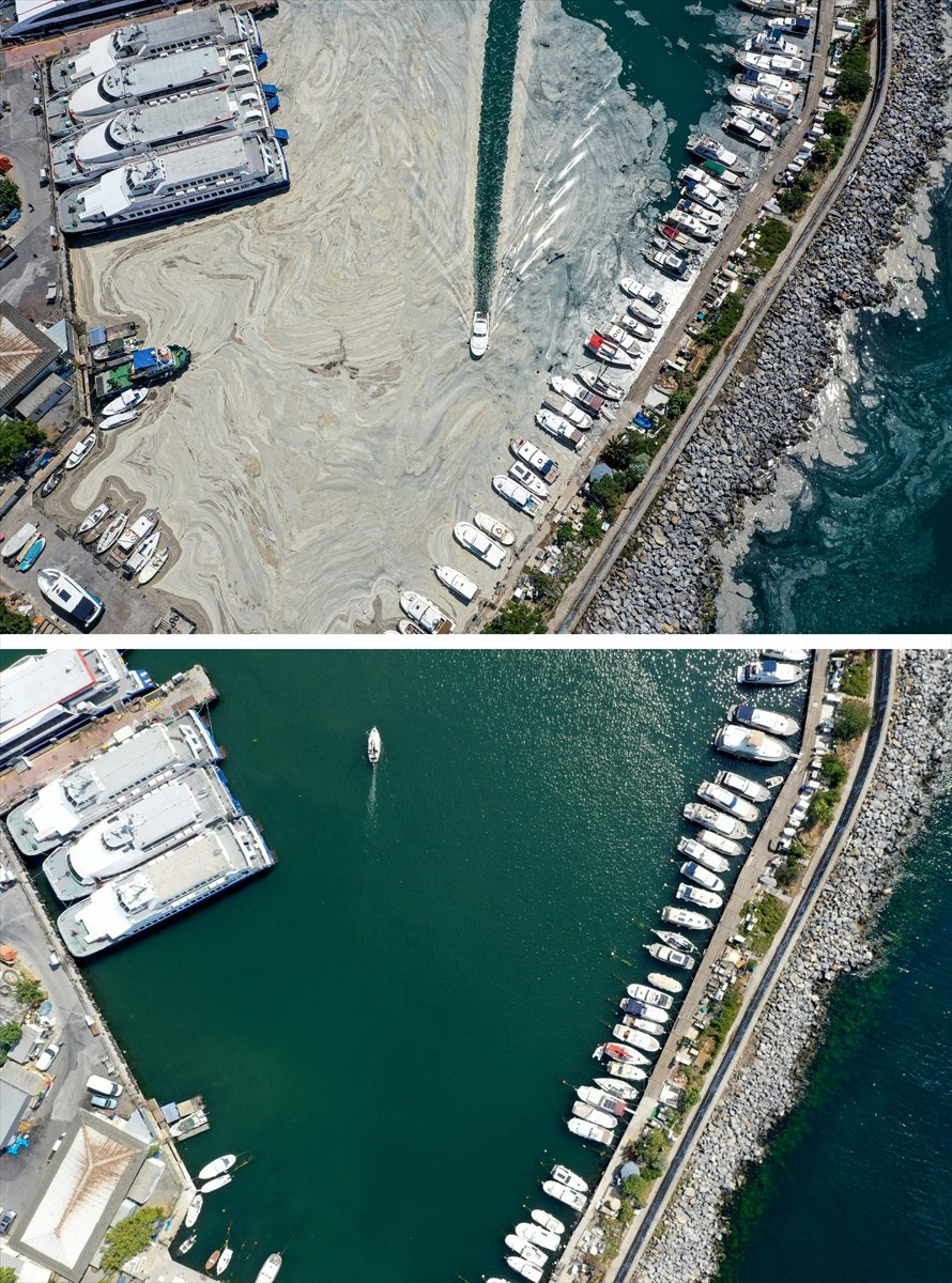 İstanbul sahilleri müsilajdan arındırıldı #6