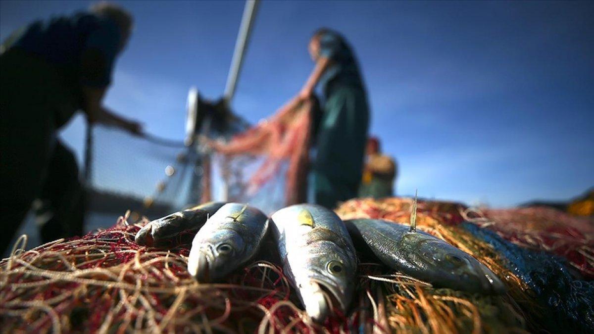 TZOB Başkanı Bayraktar, balıkçılıkta av sezonu başlarken kuralları hatırlattı #1