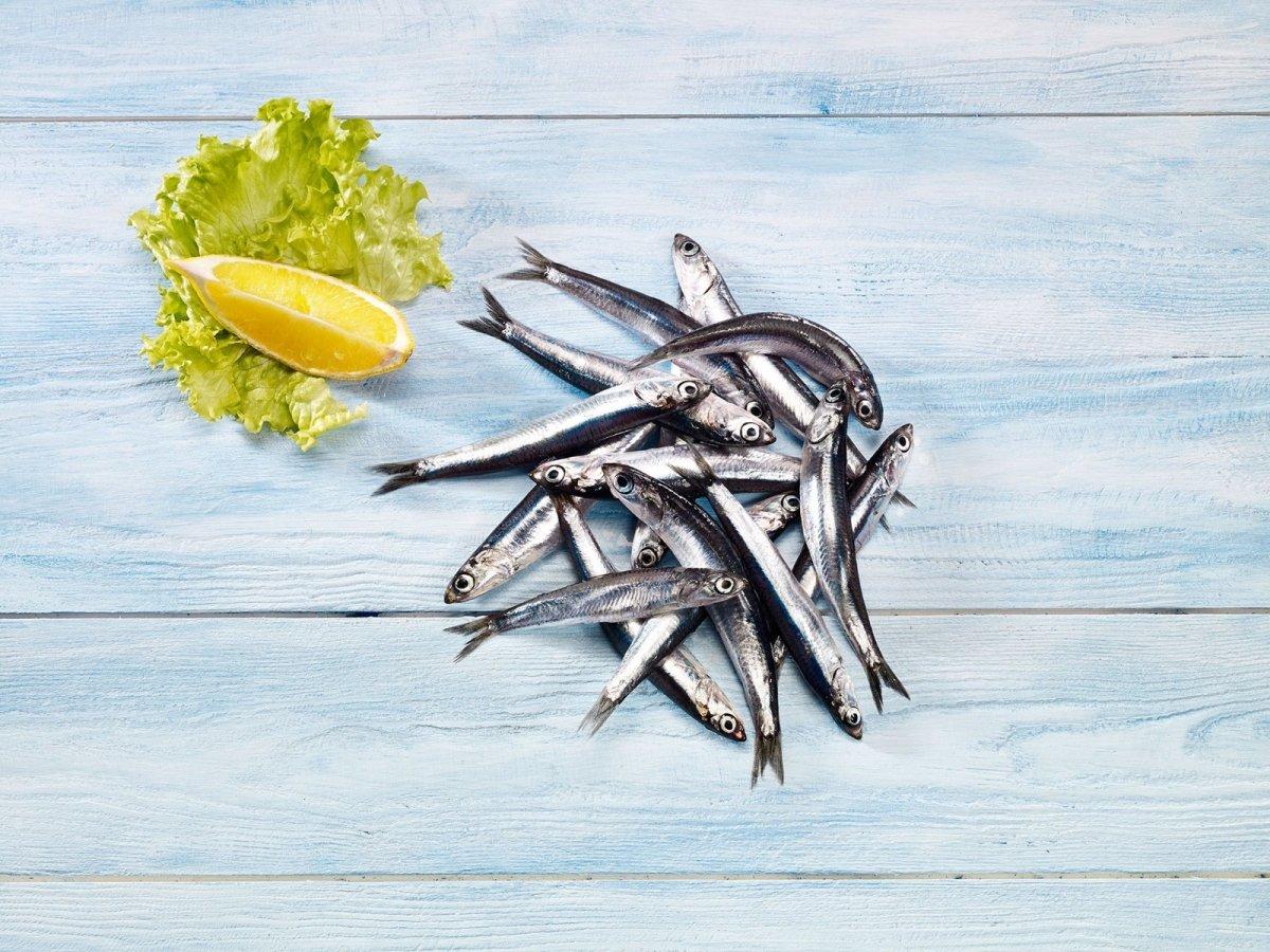 Balık tüketimi vücut direncini artırıyor #2