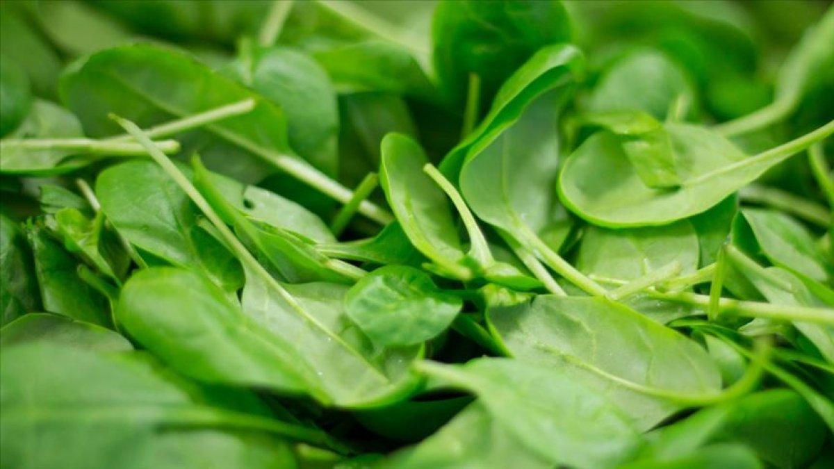 Damarları temizleyen en etkili 11 besin #10