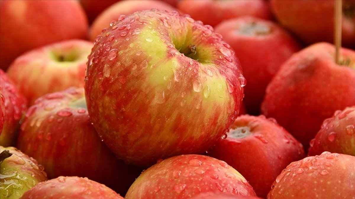 Damarları temizleyen en etkili 11 besin #7