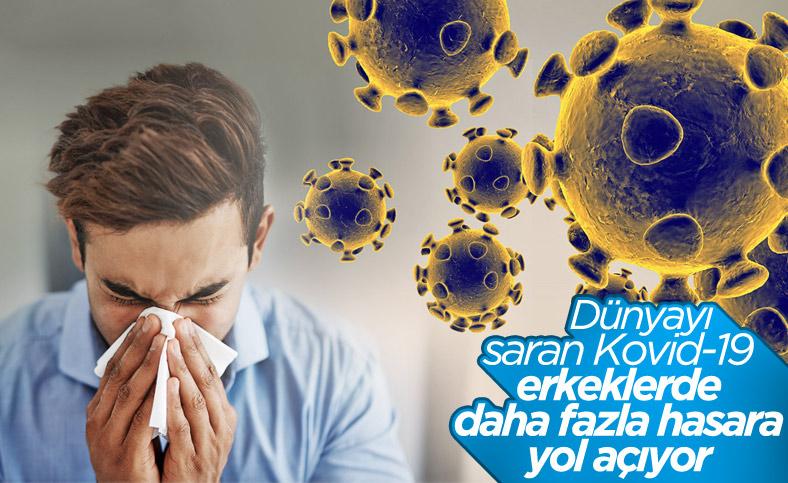 Koronavirüs, erkeklerde kısırlığa neden oluyor