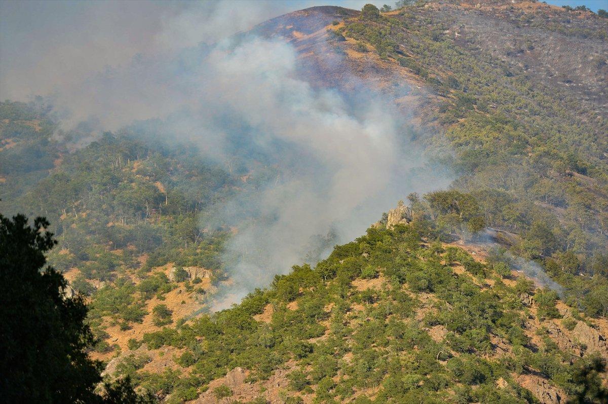 OGM: Orman yangınlarına müdahaleler sürüyor #3