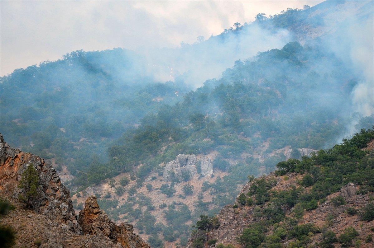 OGM: Orman yangınlarına müdahaleler sürüyor #2
