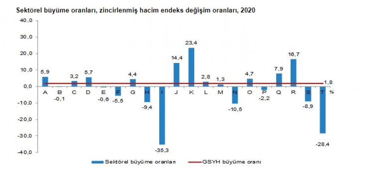 Gayrisafi yurt içi hasıla 2020 yılında yüzde 1,8 arttı #4