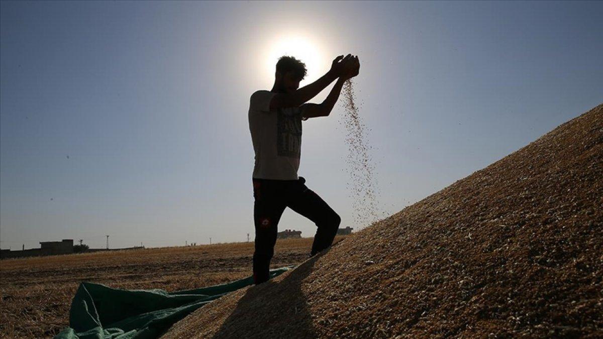 Çiftçilere  kuraklık  desteği #3