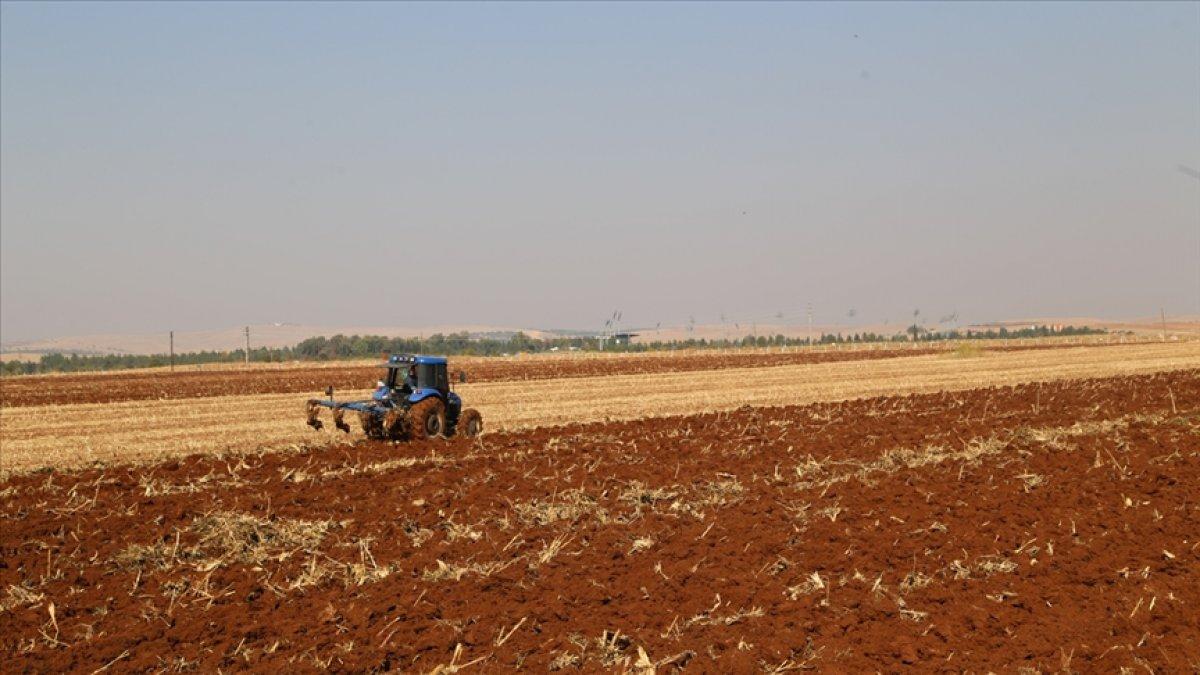 Çiftçilere  kuraklık  desteği #4