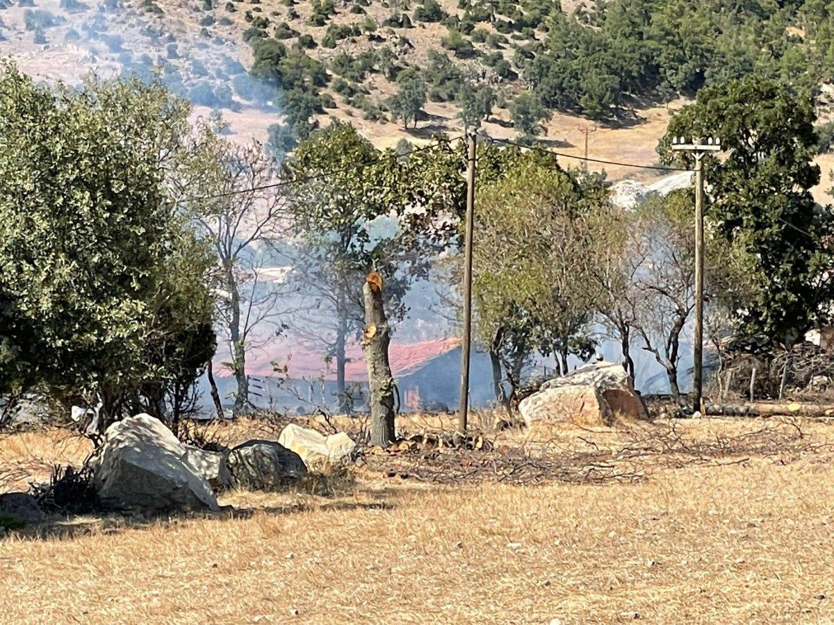 Çanakkale'de ormanlık alanda yangın çıktı  #10