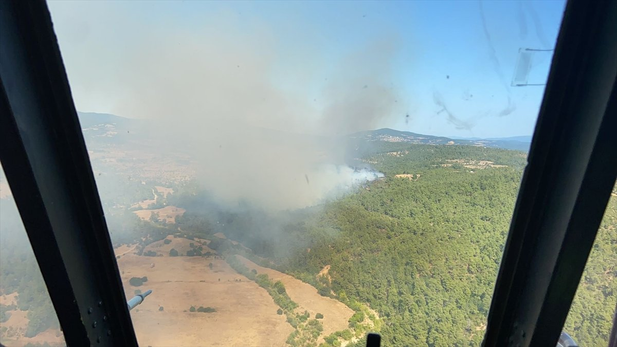 Çanakkale'de ormanlık alanda yangın çıktı  #2