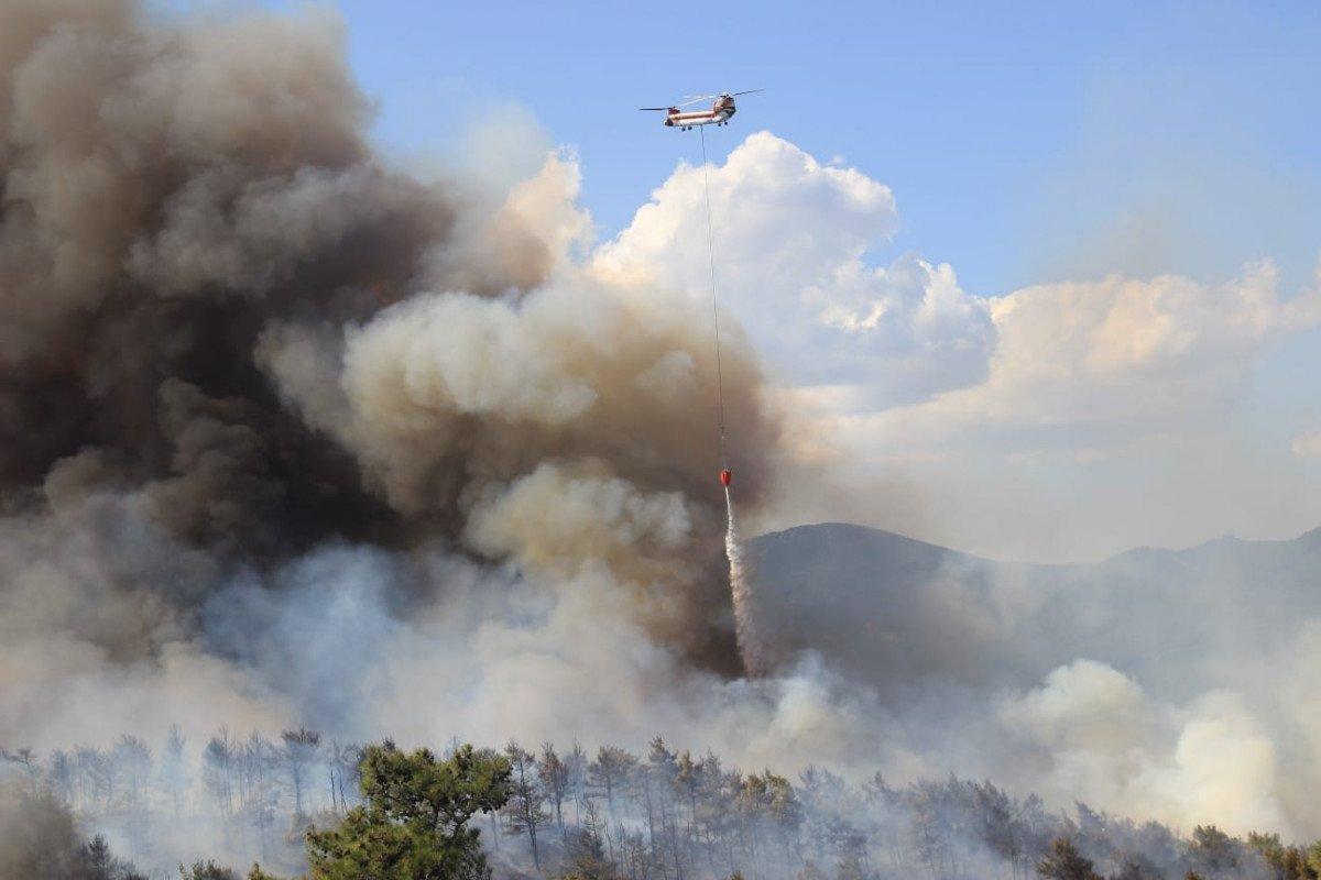 Çanakkale'de ormanlık alanda yangın çıktı  #4
