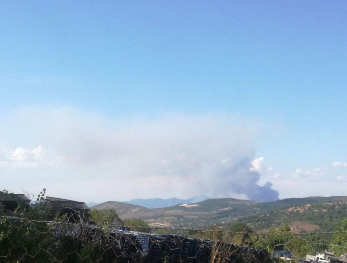 Çanakkale'de ormanlık alanda yangın çıktı  #6