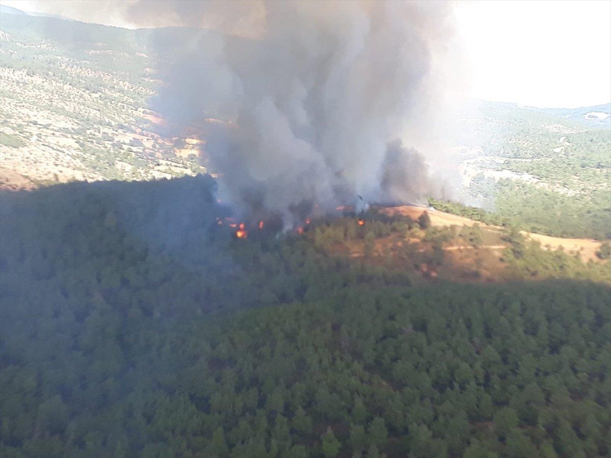 Çanakkale'de ormanlık alanda yangın çıktı  #1