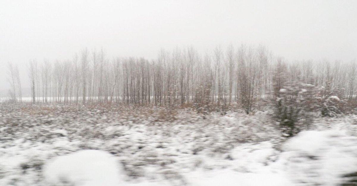 Acı ve Tatlı  belgeseli Kazan Film Festivali nde yarışacak #5