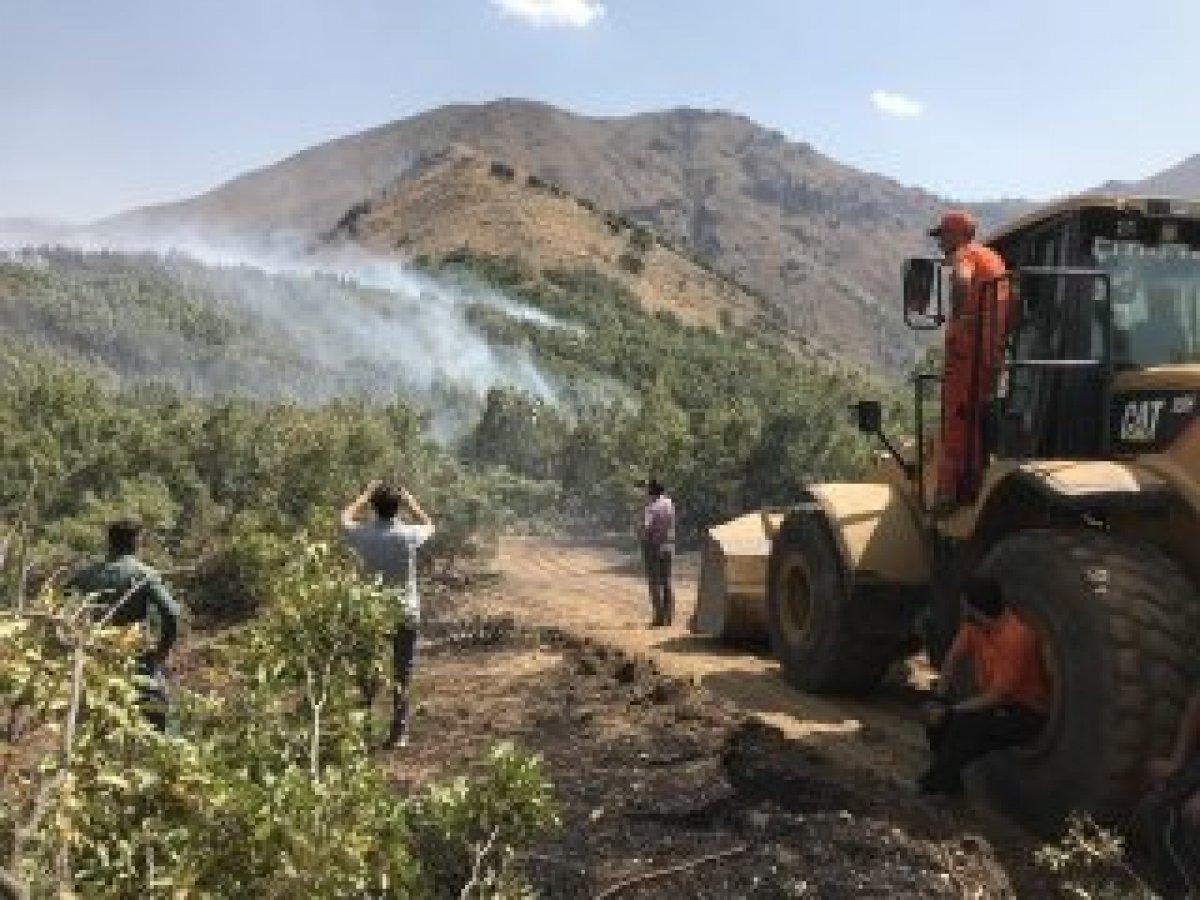 Şemdinli'de orman yangını kontrol altına alındı #1