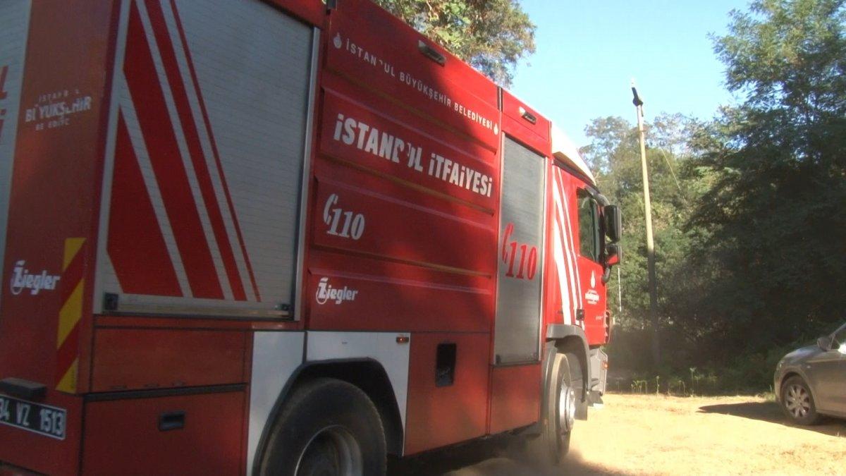 Anadolu Kavağı'nda yangın paniği #2