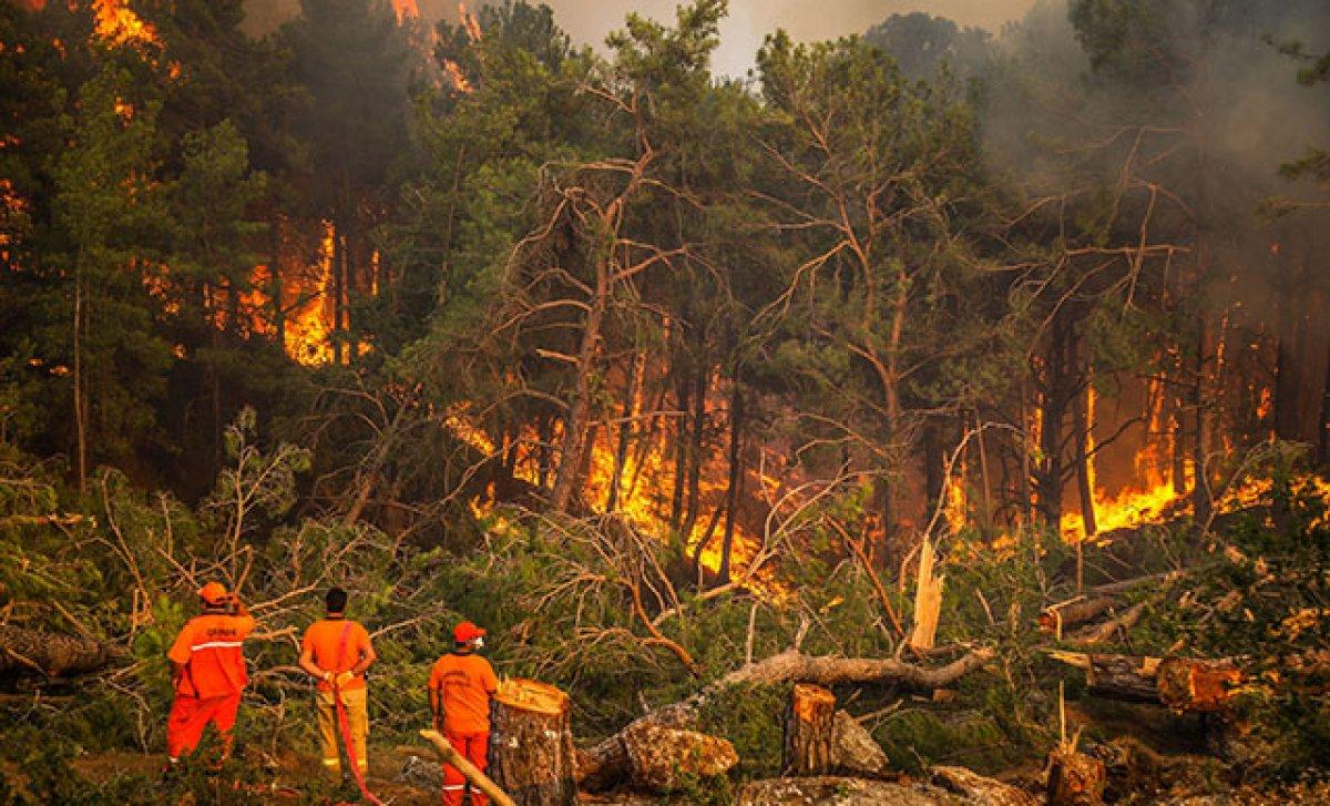 Antalya da yangınların önüne geçmek için ormanlara giriş yasağı uzatıldı #3