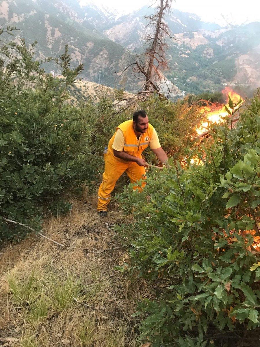 OGM: 9 ildeki tüm yangınlar söndürüldü #3