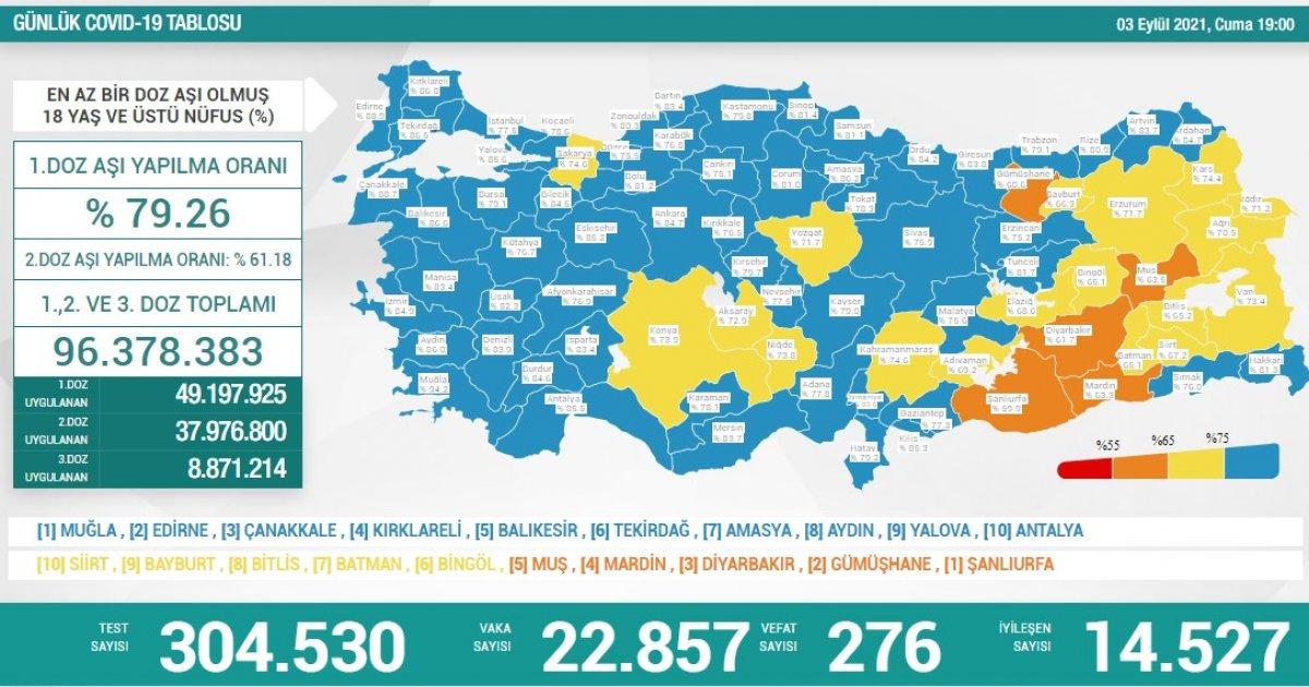 3 Eylül Türkiye de koronavirüs tablosu #1