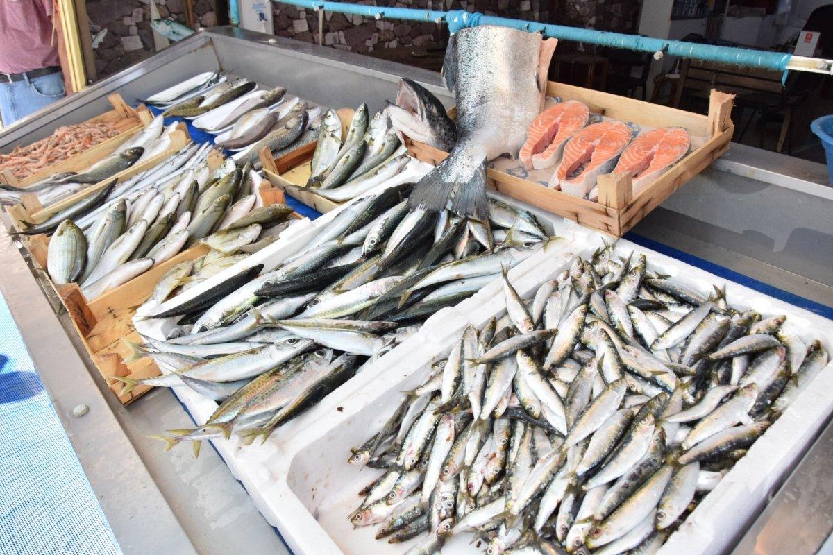 Çanakkale'de lüferin kilosu 150 liraya satılıyor #1