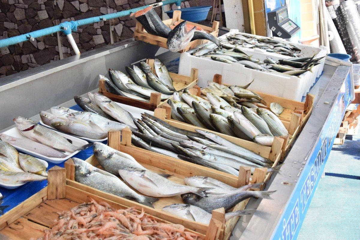 Çanakkale'de lüferin kilosu 150 liraya satılıyor #2