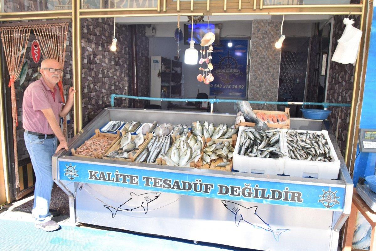 Çanakkale'de lüferin kilosu 150 liraya satılıyor #3