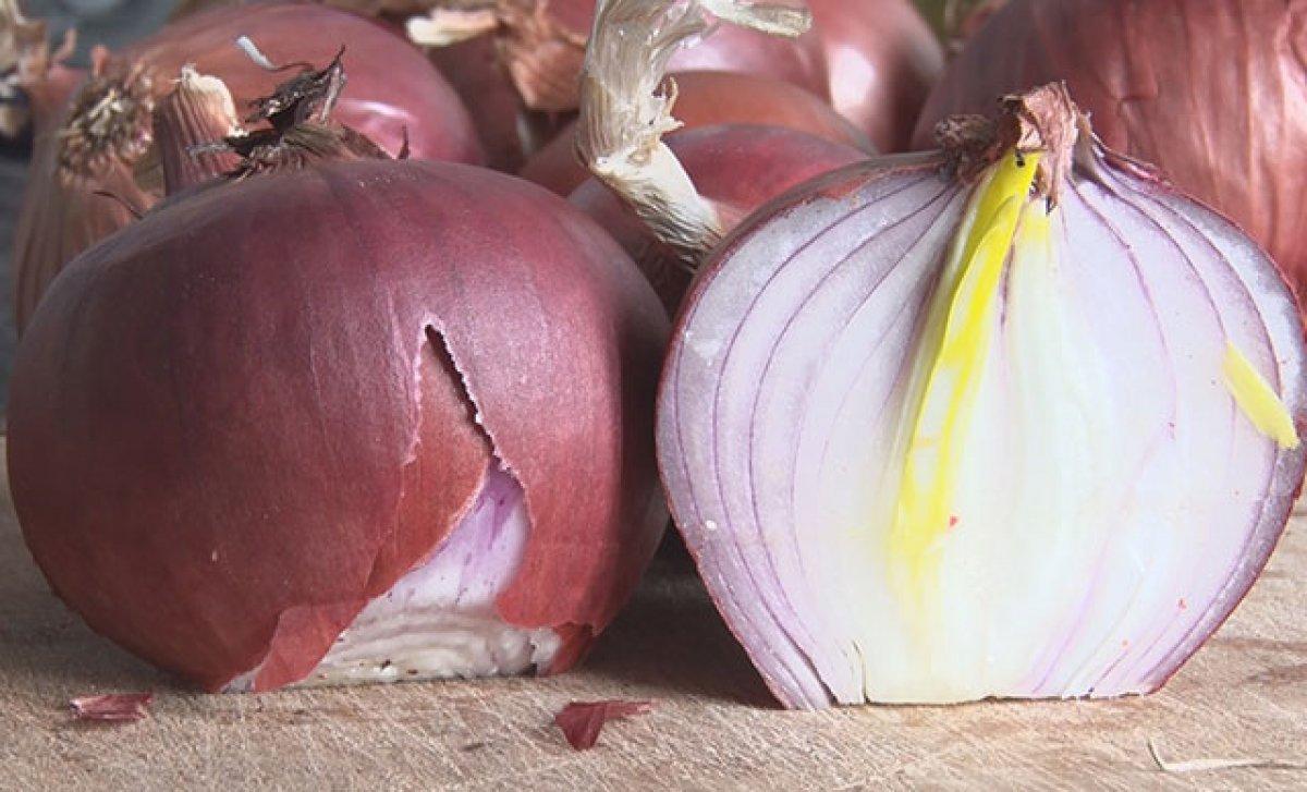 Soğanın sağlığa 10 inanılmaz faydası #1