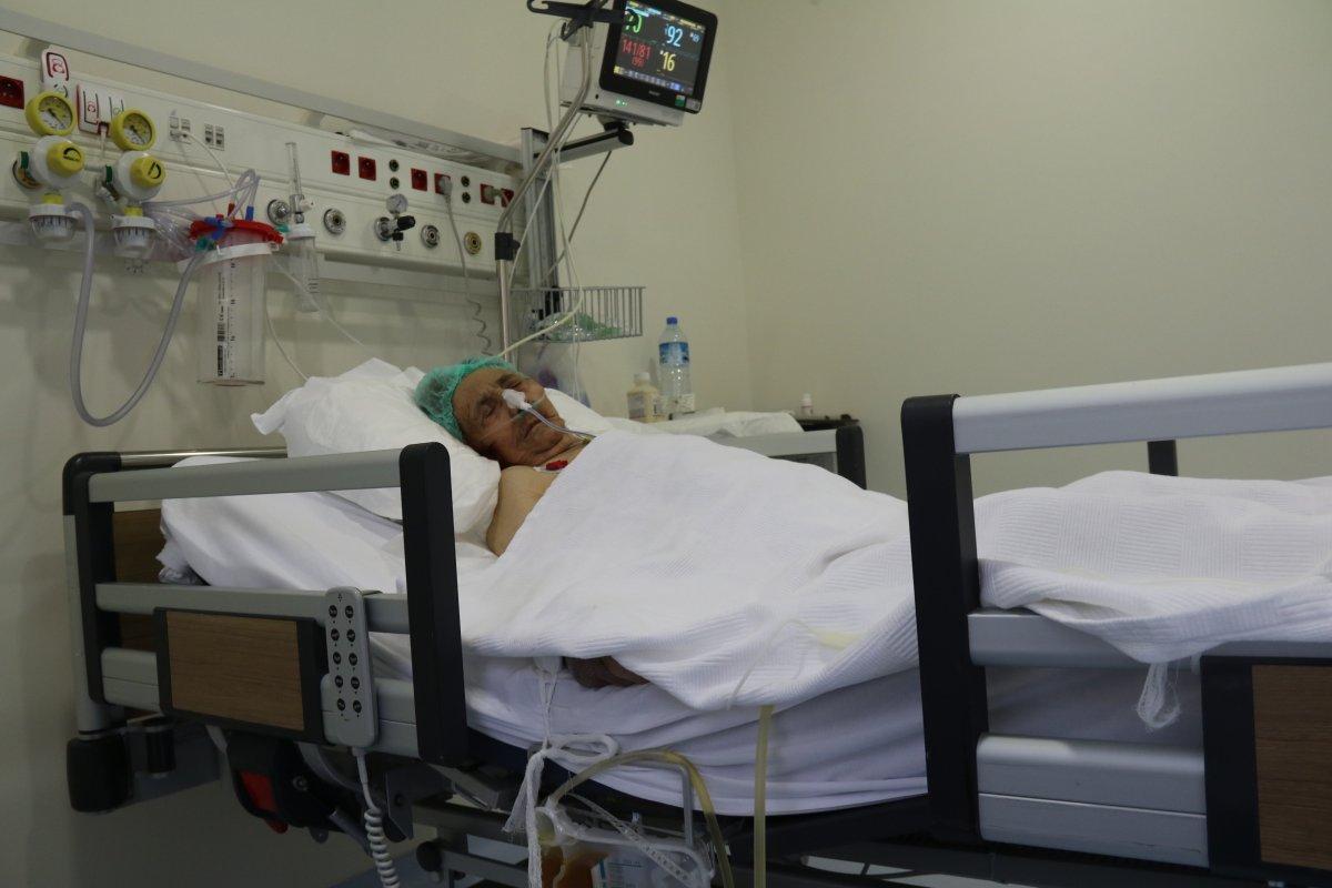 Afyonkarahisar da koronavirüsü atlatan asırlık çınar #3