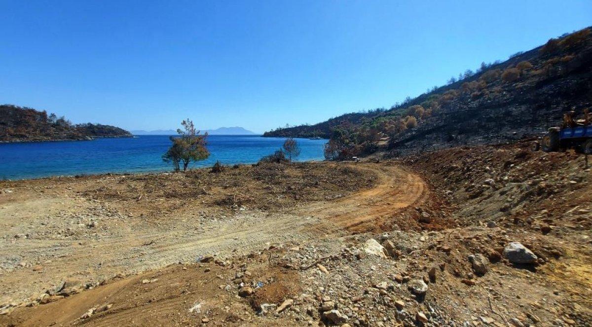 Milas'ta yanan ormanlık alanlara  inşaat yapılıyor  iddiası yalan çıktı #1