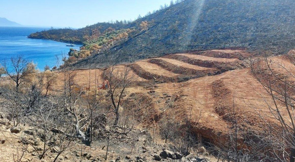 Milas'ta yanan ormanlık alanlara  inşaat yapılıyor  iddiası yalan çıktı #3