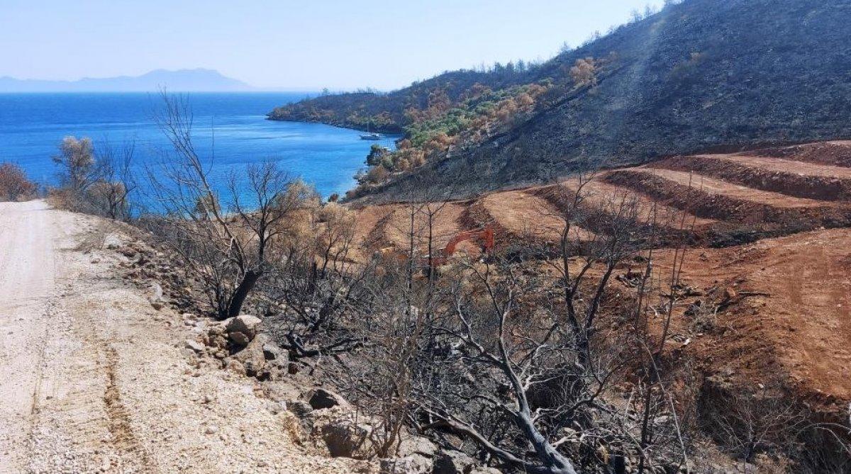 Milas'ta yanan ormanlık alanlara  inşaat yapılıyor  iddiası yalan çıktı #8