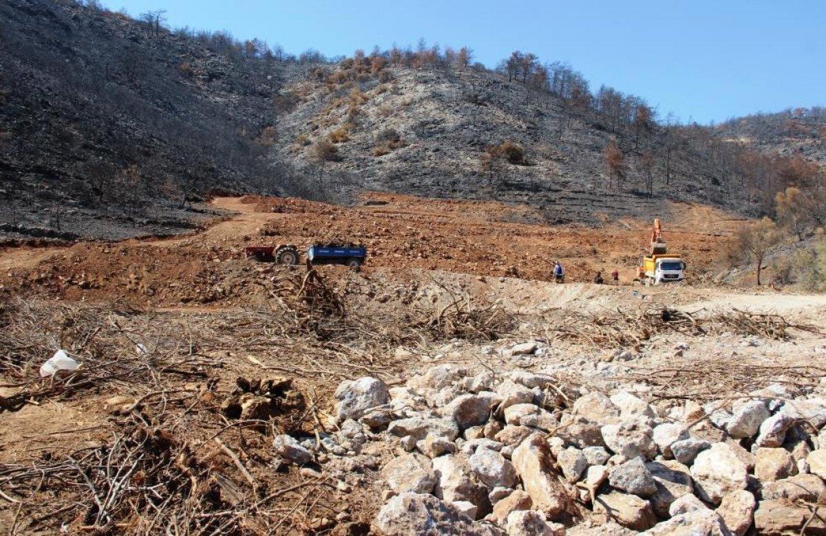 Milas'ta yanan ormanlık alanlara  inşaat yapılıyor  iddiası yalan çıktı #5