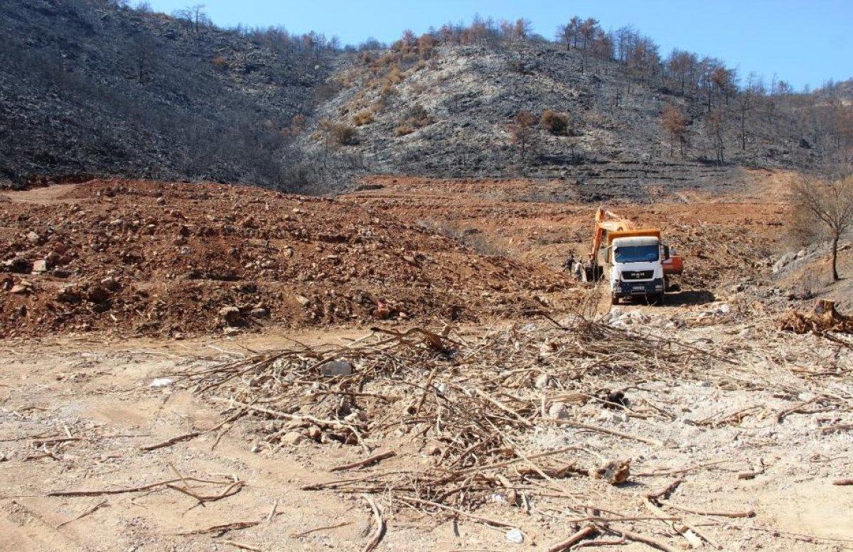 Milas'ta yanan ormanlık alanlara  inşaat yapılıyor  iddiası yalan çıktı #7