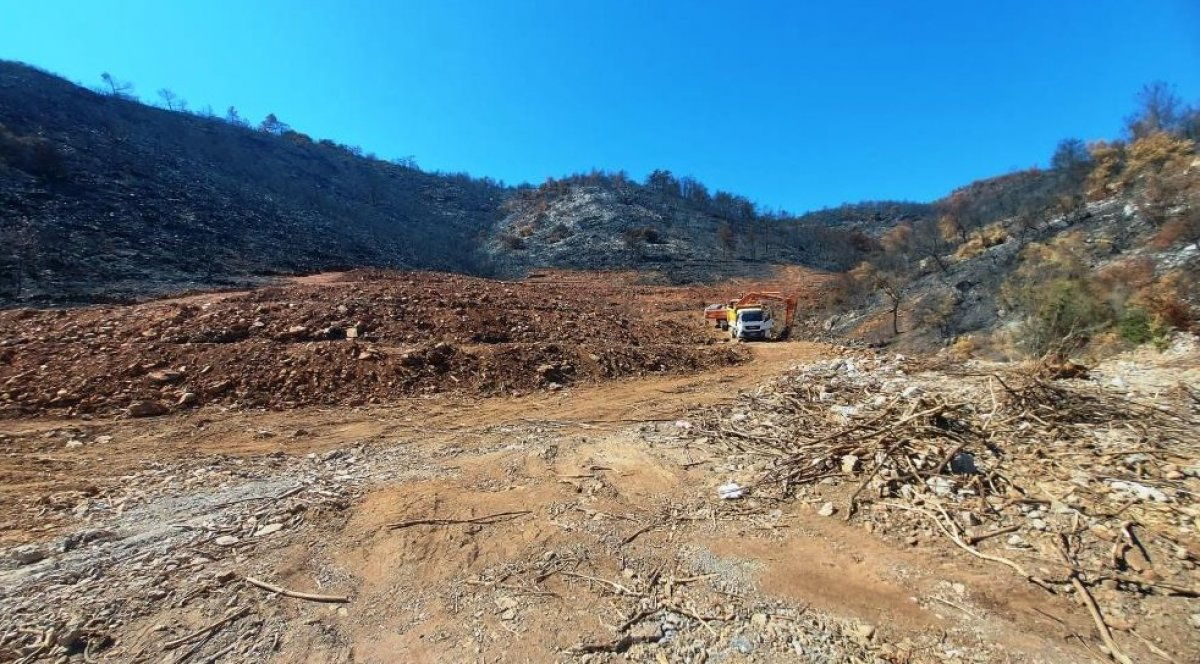 Milas'ta yanan ormanlık alanlara  inşaat yapılıyor  iddiası yalan çıktı #2