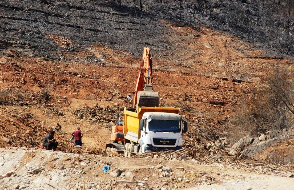 Milas'ta yanan ormanlık alanlara  inşaat yapılıyor  iddiası yalan çıktı #6