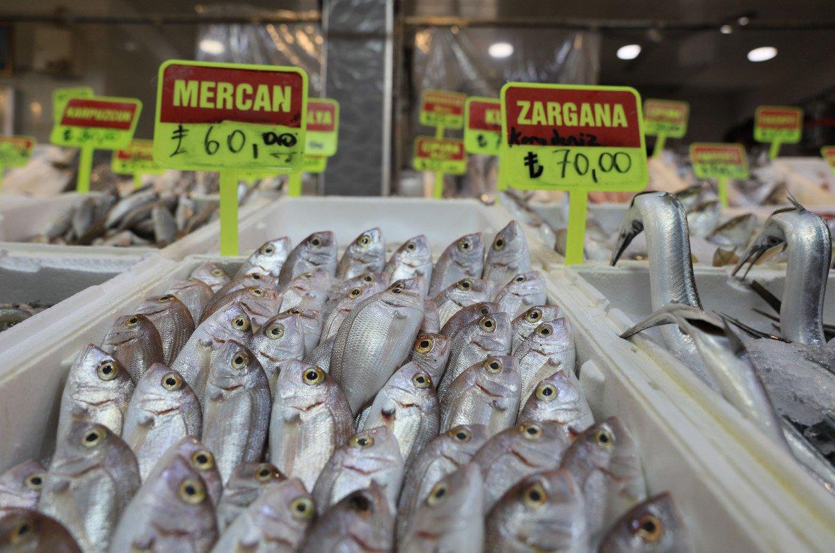 Akdeniz de sezon açılınca balık fiyatlarının düşmesi bekleniyor #1