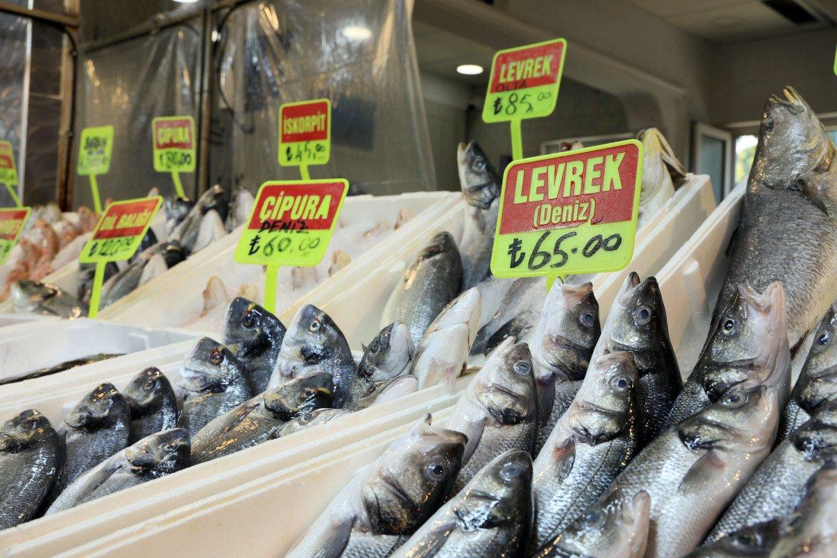 Akdeniz de sezon açılınca balık fiyatlarının düşmesi bekleniyor #4