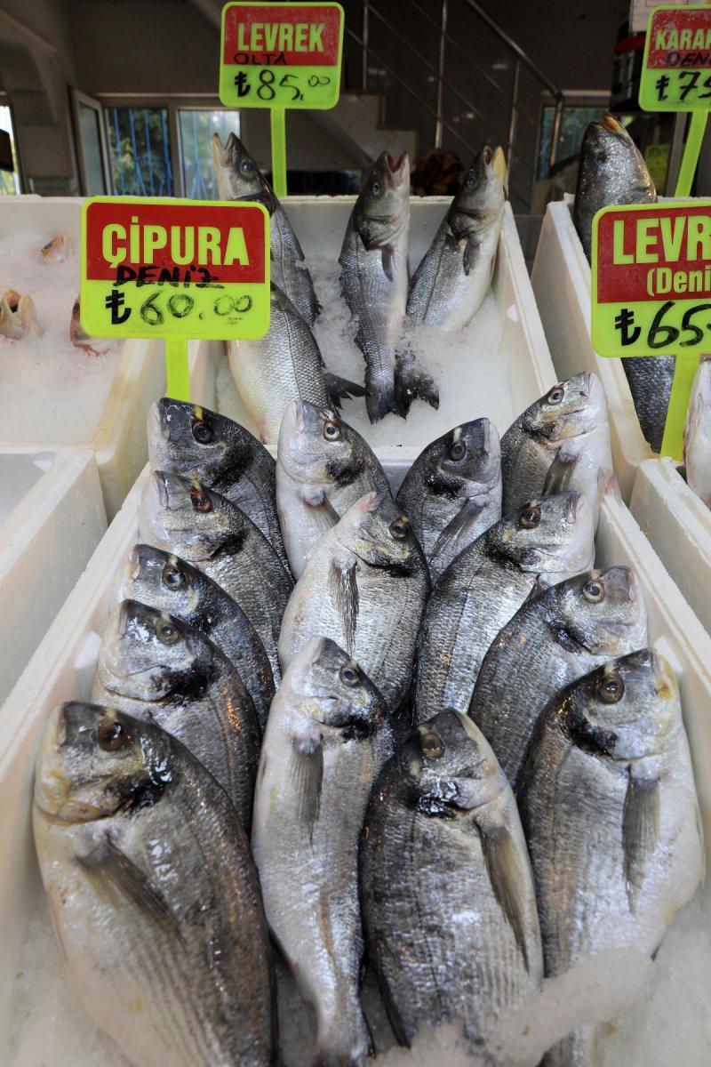 Akdeniz de sezon açılınca balık fiyatlarının düşmesi bekleniyor #5