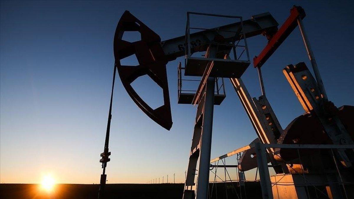 Geçen hafta emtia piyasasının yükselen yıldızı doğalgaz oldu #2