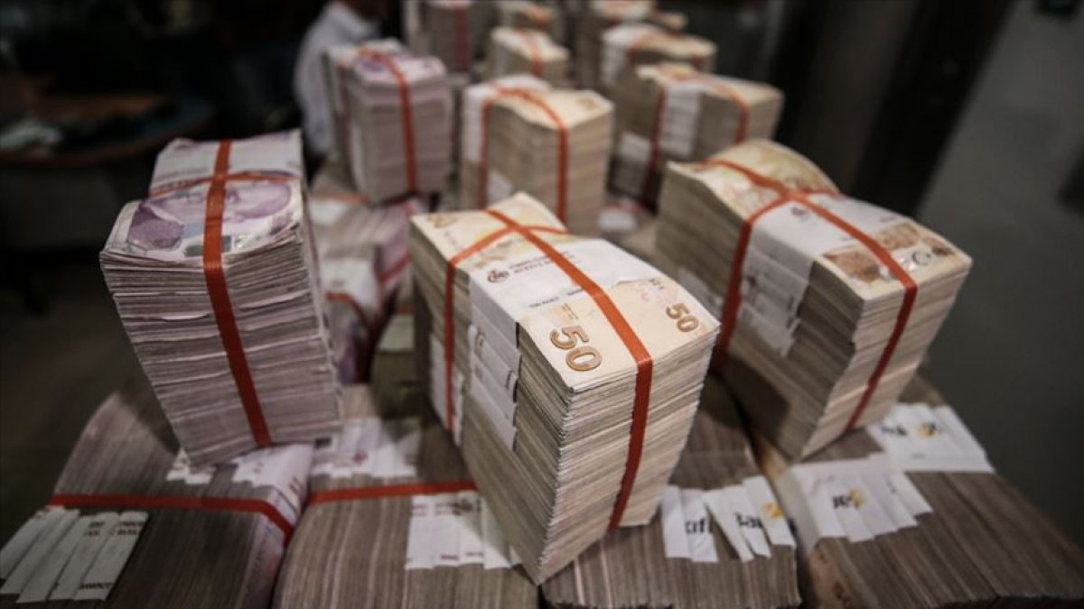 İç borçlanma, ağırlıklı olarak Türk Lirası cinsinden yapılacak #1