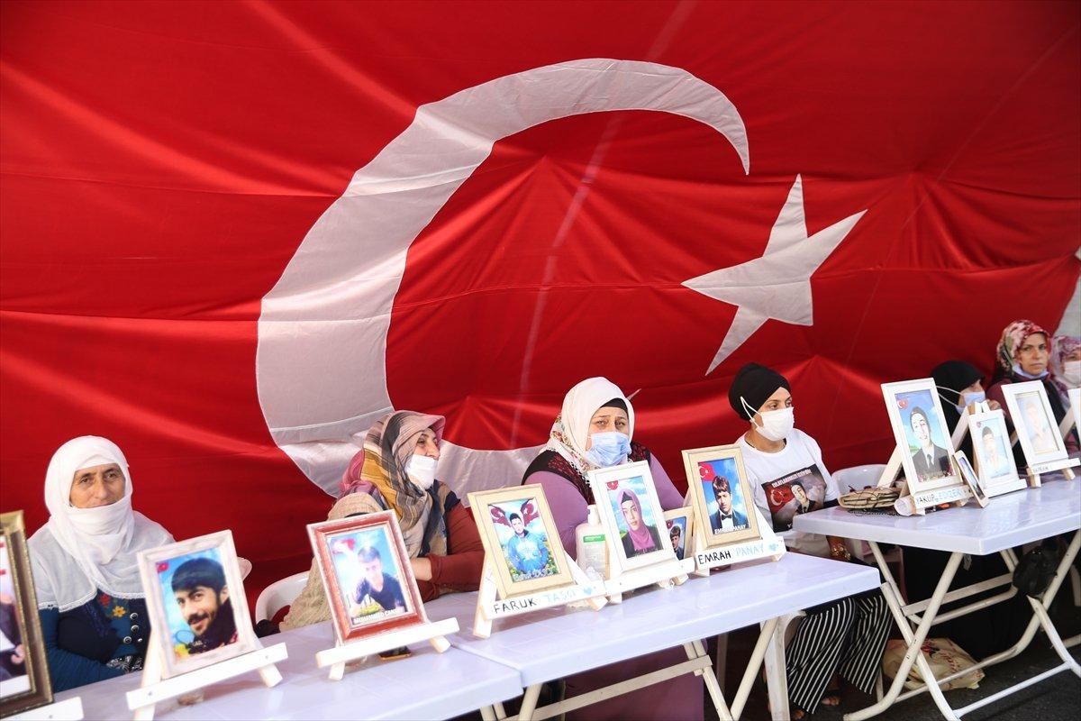 Diyarbakır annesi: Oğlumu onlar için doğurmadım #1